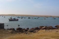 lagunilla